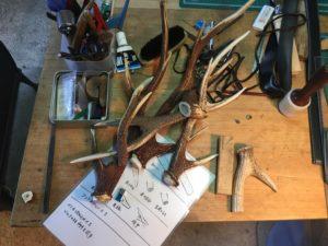 作業場で鹿の角の設計図を広げる